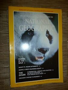 National Geographic PANDAS IN THE WILD  DECEMBER 1981 - London, United Kingdom - National Geographic PANDAS IN THE WILD  DECEMBER 1981 - London, United Kingdom