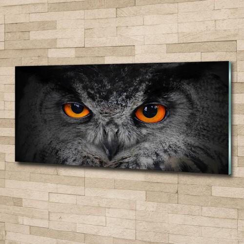 Wandbild aus Plexiglas® Druck auf Acryl 125x50 Tiere Teufelsaugen Eule