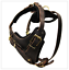 Dean-amp-Tyler-The-Boss-Leather-Dog-Harness-with-Chest-Plate-Medium-Large-Dogs