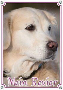 Dog Shield Goldie - Panneau d'avertissement Golden Retriever Panneau en métal