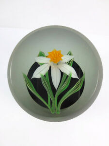 Correia-1985-Limited-Edition-Art-Glass-Daffodill-Flower-Paperweight-Signed