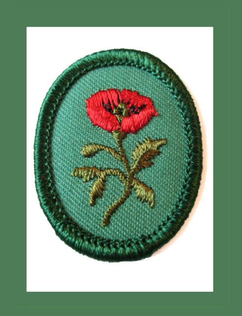 STAR OF BETHLEHEM Girl Scout TROOP CREST 1955  Badge NEW Multi=1 Ship Chrg