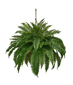 Image Is Loading Artificial Double Boston Fern Hanging Basket Extra Full