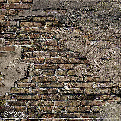 Brick 10'x10' Indoor Computer-painted Scenic Photo Background Backdrop SY209B11