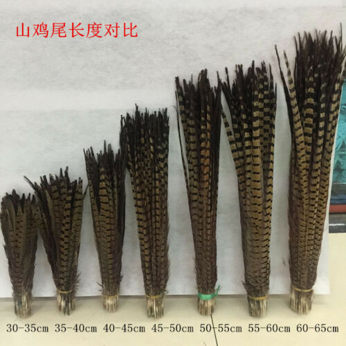 Wholesale 5-200pcs beautiful natural pheasant tail feathers 25-100cm//10-40inch