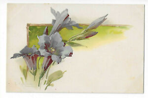 Illustration Signed Catharina Klein Floral Flower