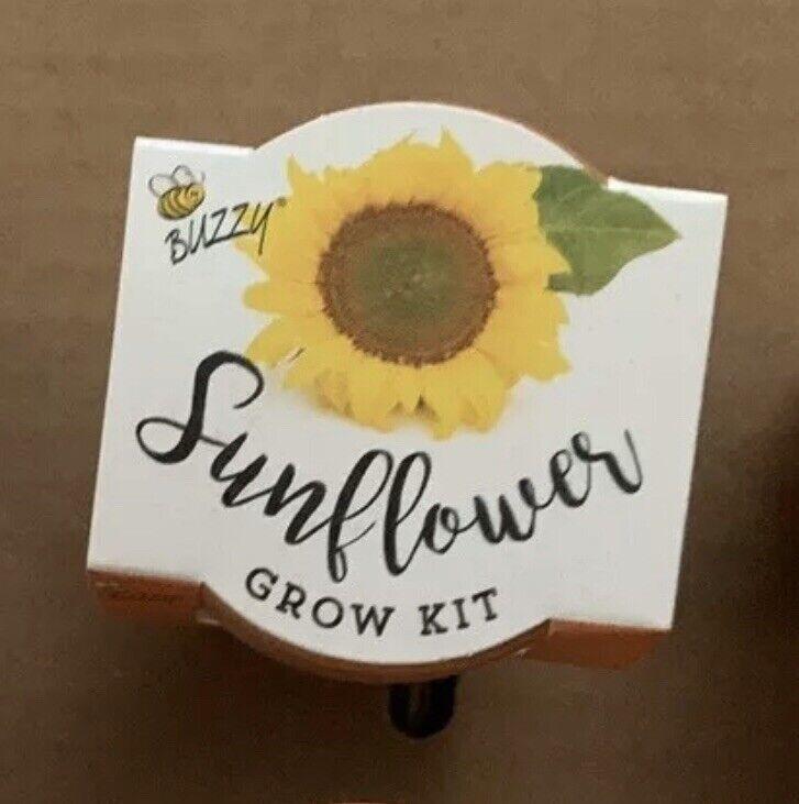 Set Of 2 Grow Your Own Sunflower Kit Sunflower Pot For Sale Online