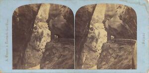Suisse Braun Reggiseno Da La Tamina Ragaz Foto Stereo Vintage Albumina Ca 1865