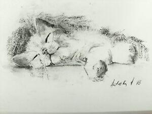 Sleeping-Cat-Charcoal-Drawing-Original-Art-Pet-Sketch-A4-Pet-Portrait