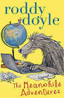 The Meanwhile Adventures by Roddy Doyle (Paperback, 2013)