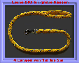Hundeleine-BIG-4-Laengen-1m-1-2m-1-5m-2m-sowie-45-Farben