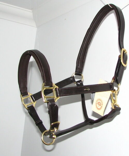HERITAGE English Leather Comfort Padded Posh  Show Headcollar Halter Brass NEW  high discount