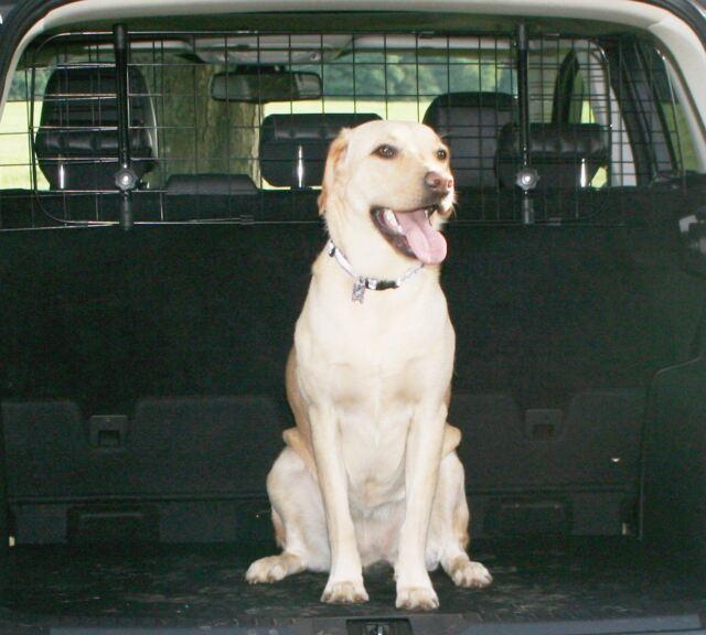 Car Headrest Dog Guard /& Bootliner Protectors Mini Mini Clubman 2007-2018