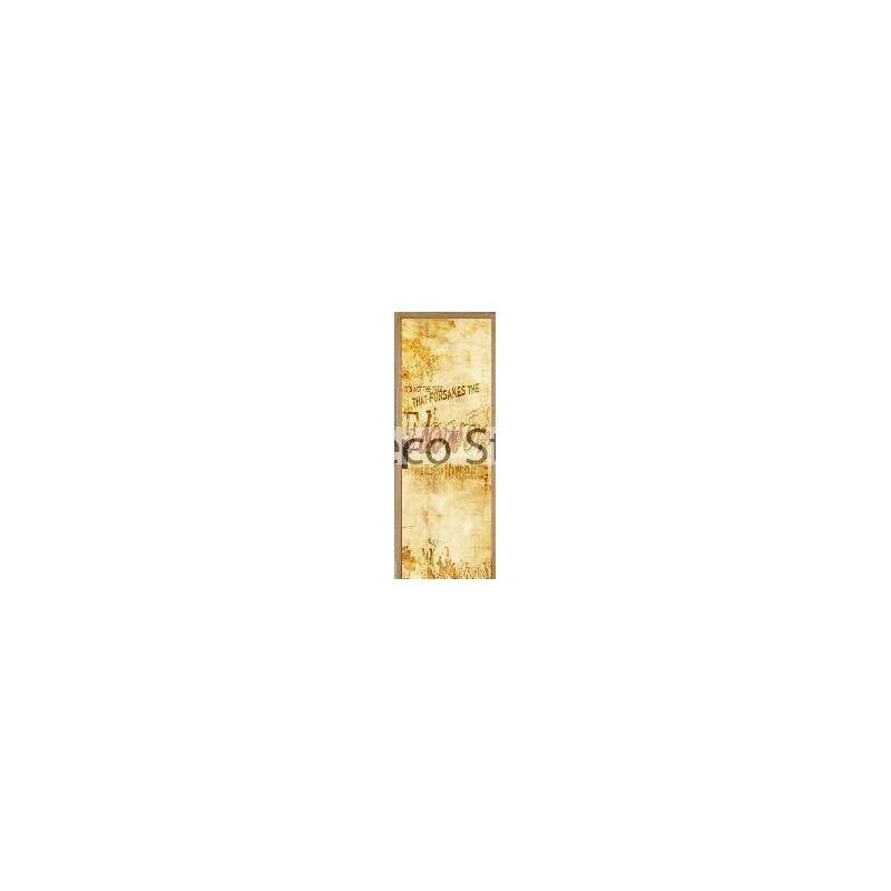 Adhesivo para Puerta Plana Diseño 93x204cm Ref 051 56529c061019