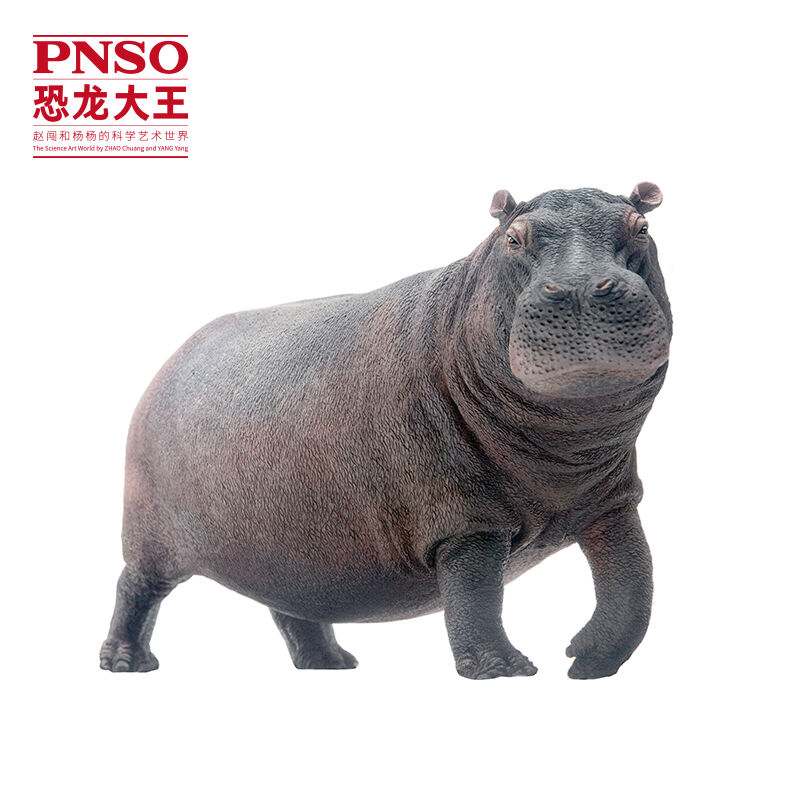 Nuovo PNSO Hippo Hippopotamus Wildlife Scientific Realistic Large Model Art Figure