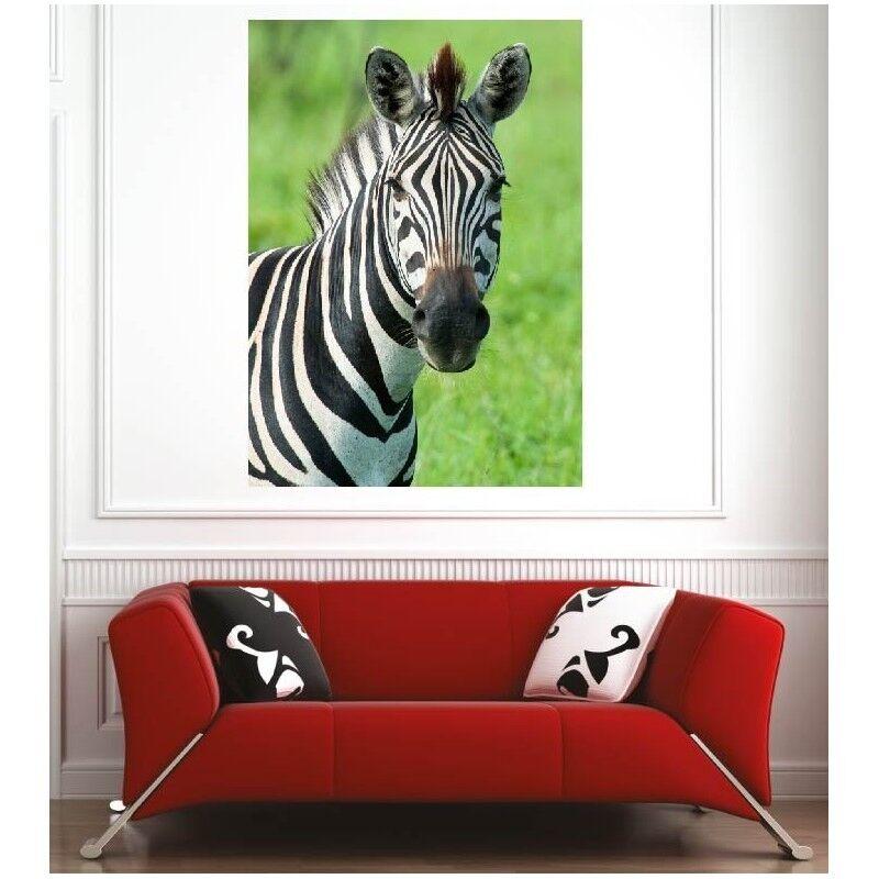 Plakat Plakat Zebra 72815014 Kunst Deco Aufkleber
