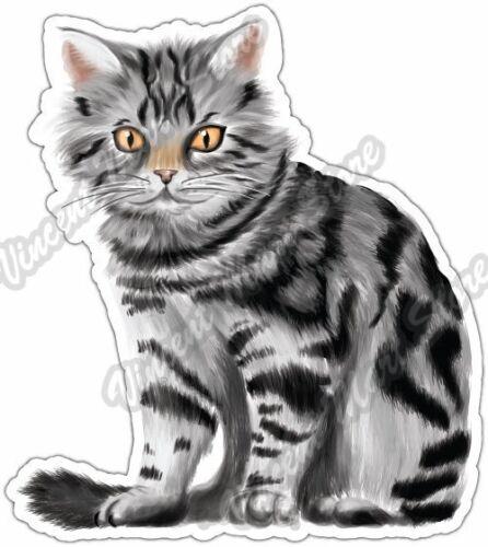 "Cute Tabby Kitten Cat Pet Pussycat Car Bumper Window Vinyl Sticker Decal 4/""X5/"""