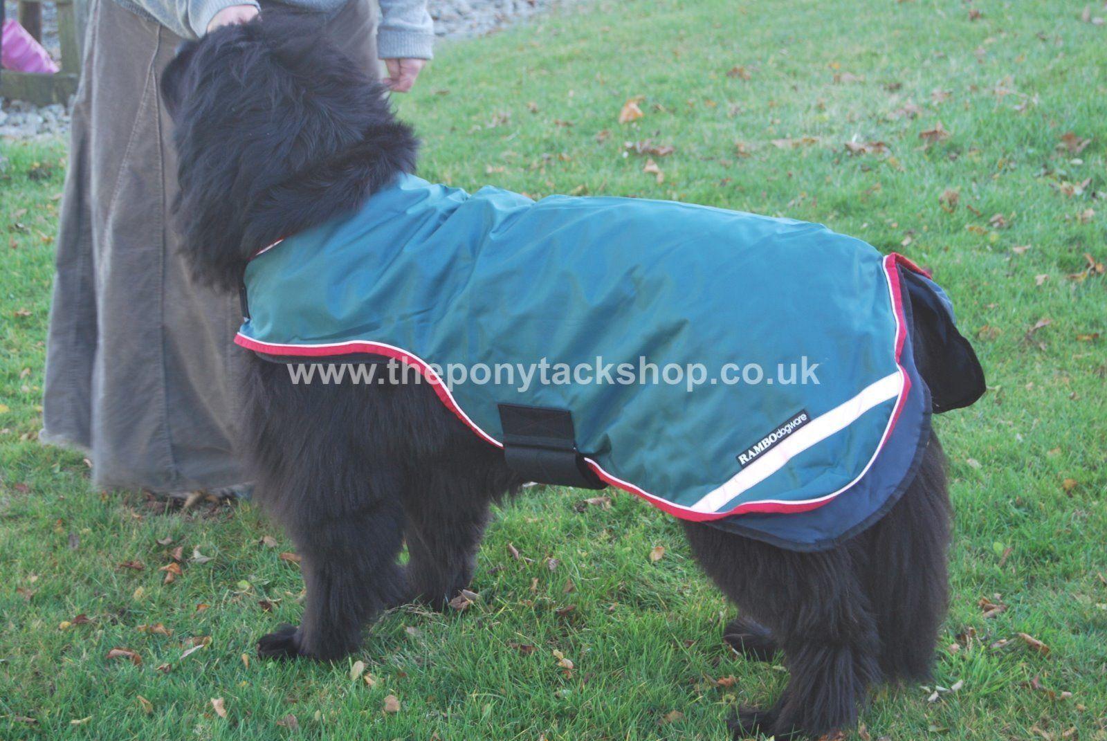 Horseware Rambo Waterproof Dog Rug - XXXL - St Bernard   Newfoundland etc