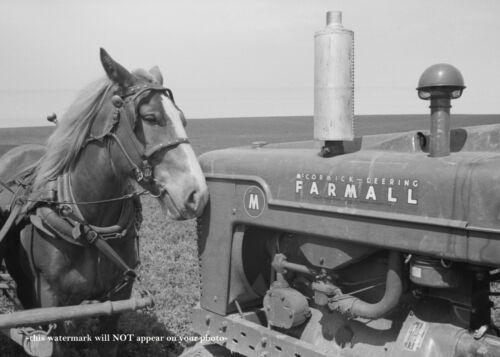 1940 Great Depression Farmall Tractor Horse PHOTO McCormick Deering IOWA Farm