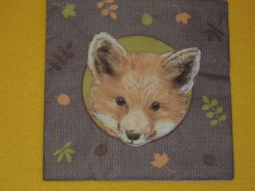 5 Servietten  Fuchs Füchse FOXES 1//4 Serviettentechnik Tiere Kopf HERBSTLICH