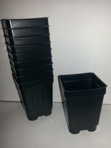 "{2.6/"" x 3.5/""} plastic flower SET OF 250 2.5 inch SQUARE BLACK NURSERY POTS"