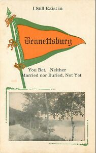 034-I-Still-Exist-034-in-Bennettsburg-New-York-Neither-Married-Nor-Buried-1914-Pennant