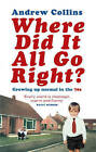 Where Did It All Go Right?: Growing Up Normal in the 70s by Andrew Collins (Paperback, 2004)