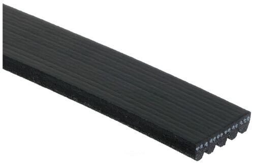 Serpentine Belt-Premium OE Micro-V Belt Gates K050460