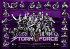 MELBOURNE STORM 2012 NRL OFFICIAL PREMIERS VICTORY PRINT SLATER CRONK SMITH