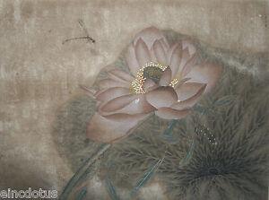 Original Gongbi Style Chinese Painting On Silk Lotus Flower 1378