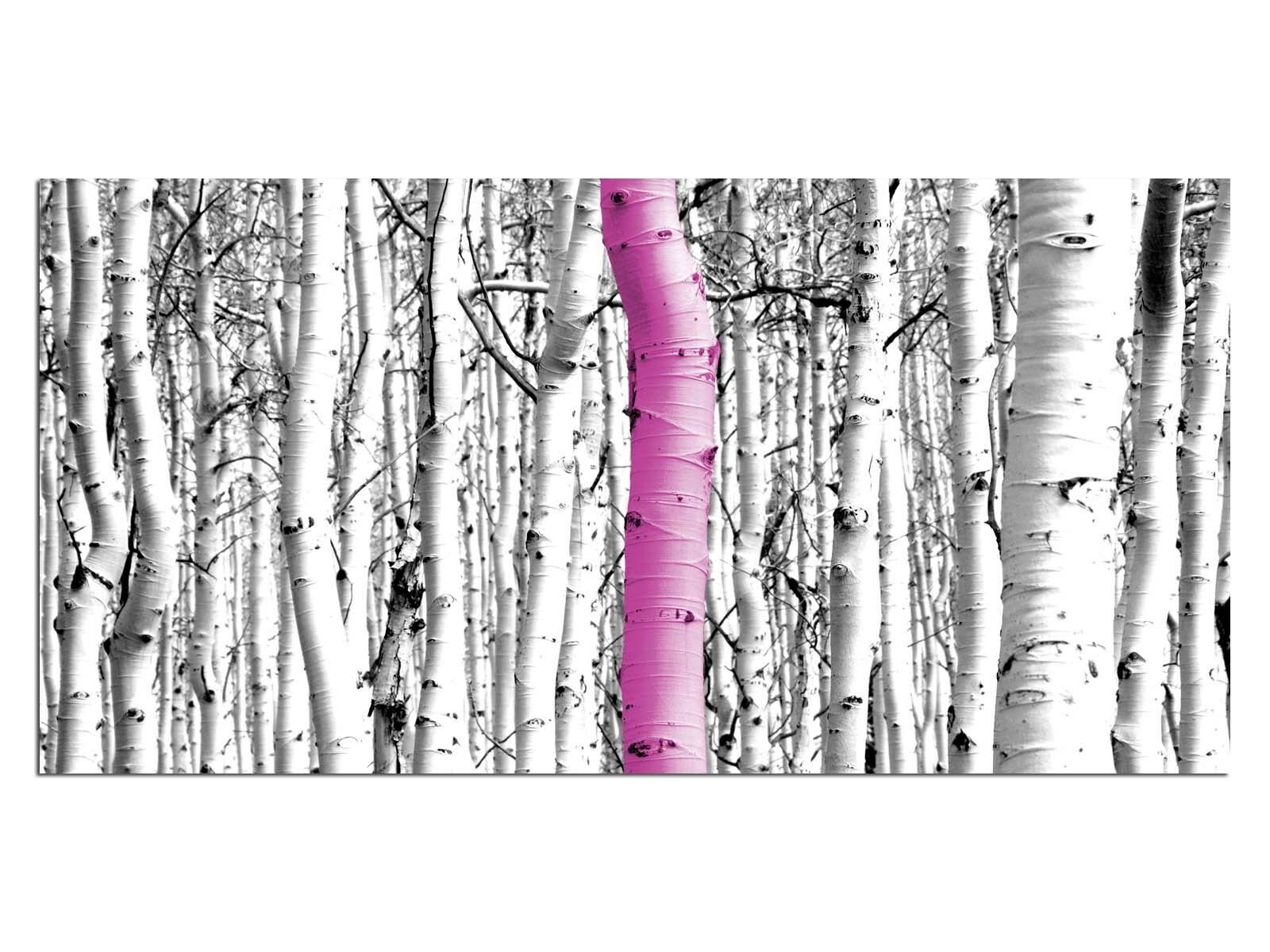 Deco Glass Picture EG4100500317 BIRCH FOREST TREE PINK Size 39,37  x 19,68  HD P