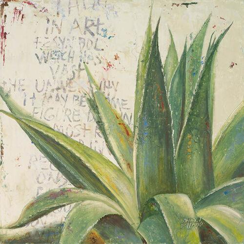 Details about  /Patricia pinto aloe I stretcher-image screen succulent cactus vintage show original title