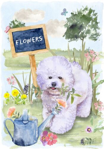 "Blank Card// Notelet Design By Starprint 4/"" x 6/"" Bichon Frise Dog"