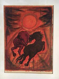 Wild-Horses-IN-Abendssonne-Scandinavia-Denmark-1966-Lithography