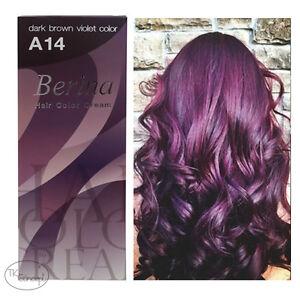 Berina No A Dark Brown Violet Permanent Hair Dye Color Fashion - Hair colour violet brown