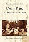 New Albany in Vintage Postcards by David C Barksdale, Robyn Davis Sekula (Paperback / softback, 2005)