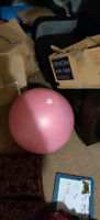 BALLY Fitness Excercise Ball 65 Centimeters City of Toronto Toronto (GTA) Preview