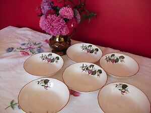 Pretty Vintage Retro bone china Regency China  Dessert cereal bowls Fuchsia - <span itemprop=availableAtOrFrom>Aston Clinton, Buckinghamshire, United Kingdom</span> - Pretty Vintage Retro bone china Regency China  Dessert cereal bowls Fuchsia - Aston Clinton, Buckinghamshire, United Kingdom