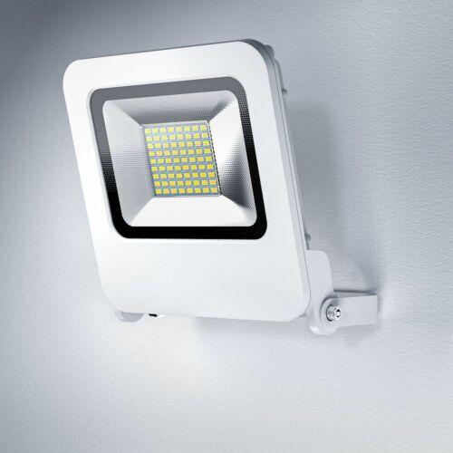 Osram ENDURA FLOOD LED 50W WT 3000K Warm white Fluter Floodlight IP65 weiß