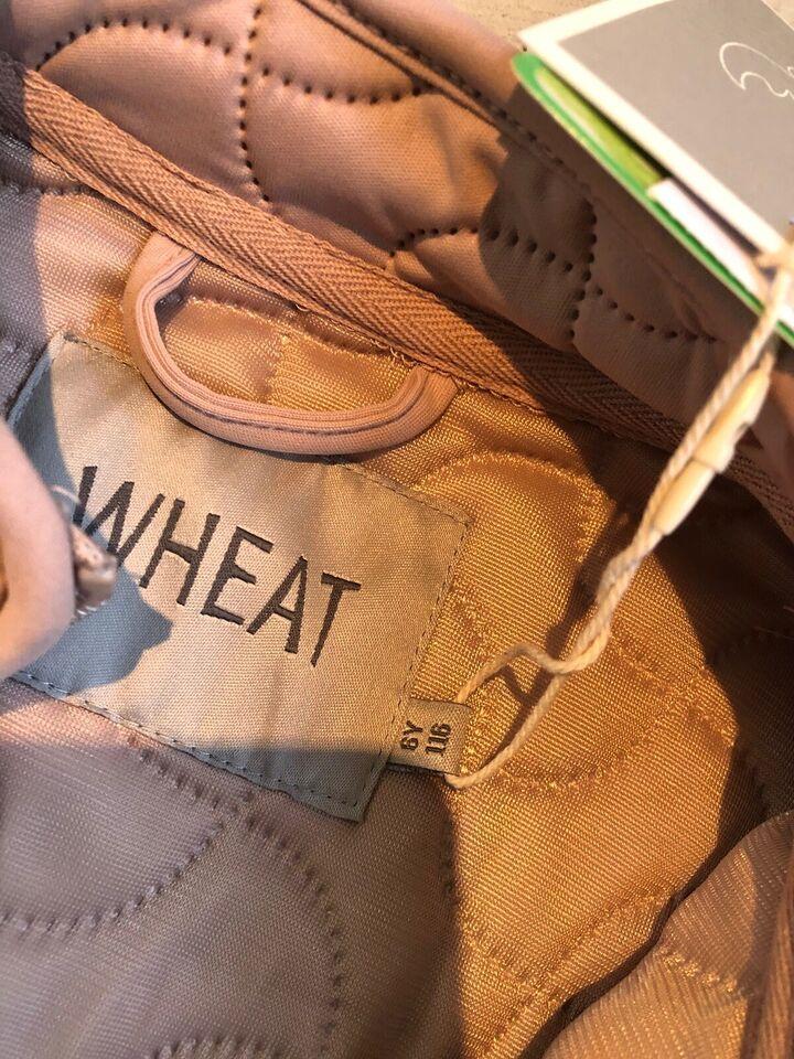 Termotøj, Termo, Wheat