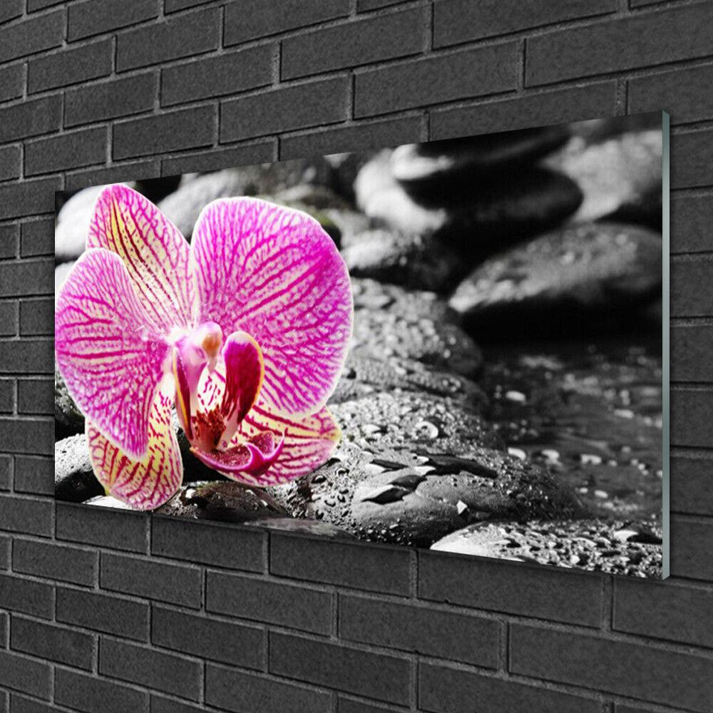 Image sur verre Tableau Impression 100x50 Floral Pierres Fleurs