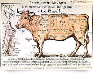 s l300 vintage french beef meat diagram poster painting 8x10 real canvas