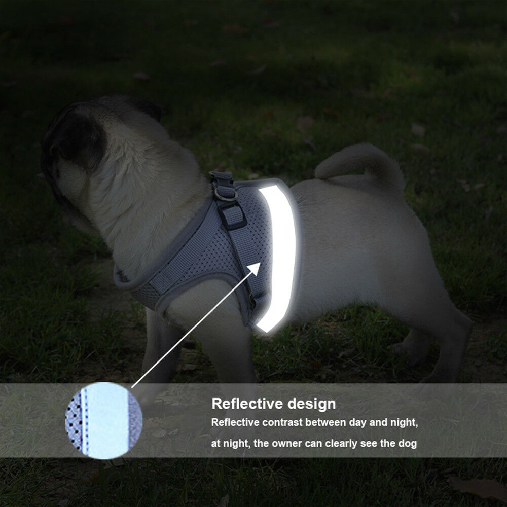Dog Mesh Harness Pet Cat Harness Leash Set Walk Collar Safety Strap Vest 6