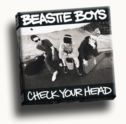 Beastie Boys Check Your Head Giclee Canvas Wall Art Picture