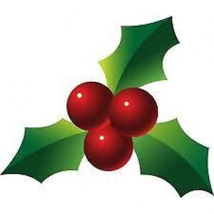 20 Water Slide Nail Art Decals Christmas Holly 38 Inch Ebay