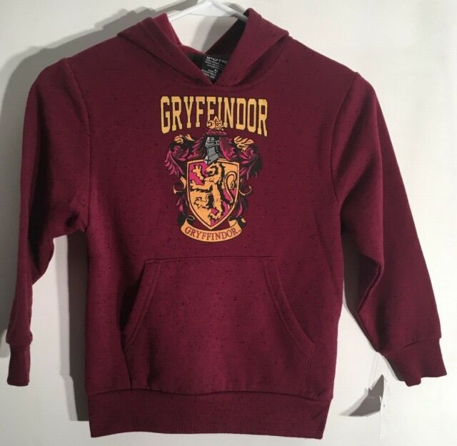 Harry Potter Final Fight Big Boys Youth Pullover Hoodie