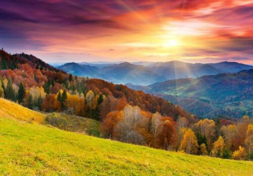 Colorful Mountain Forest in Autumn 100x144 inches Home Decor Wall Mural