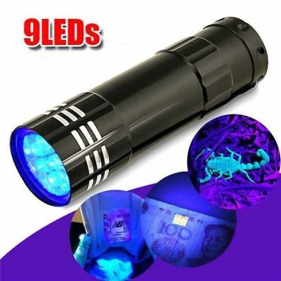 UV ultra violet 21 LED lampe de poche Mini blacklight aluminium Torch Light 6H