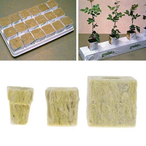 12PCS Rockwool Cube Hydroponique Grow Media Soilless culture Plantation Base