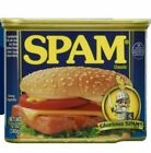 Spam S388042 25 Less Sodium 12 oz Can, 8 Pack